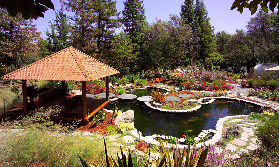 Residential koi pond nimbus pond inc for Koi fish pond help